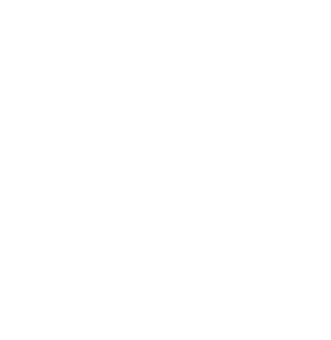 House of Ping Pong